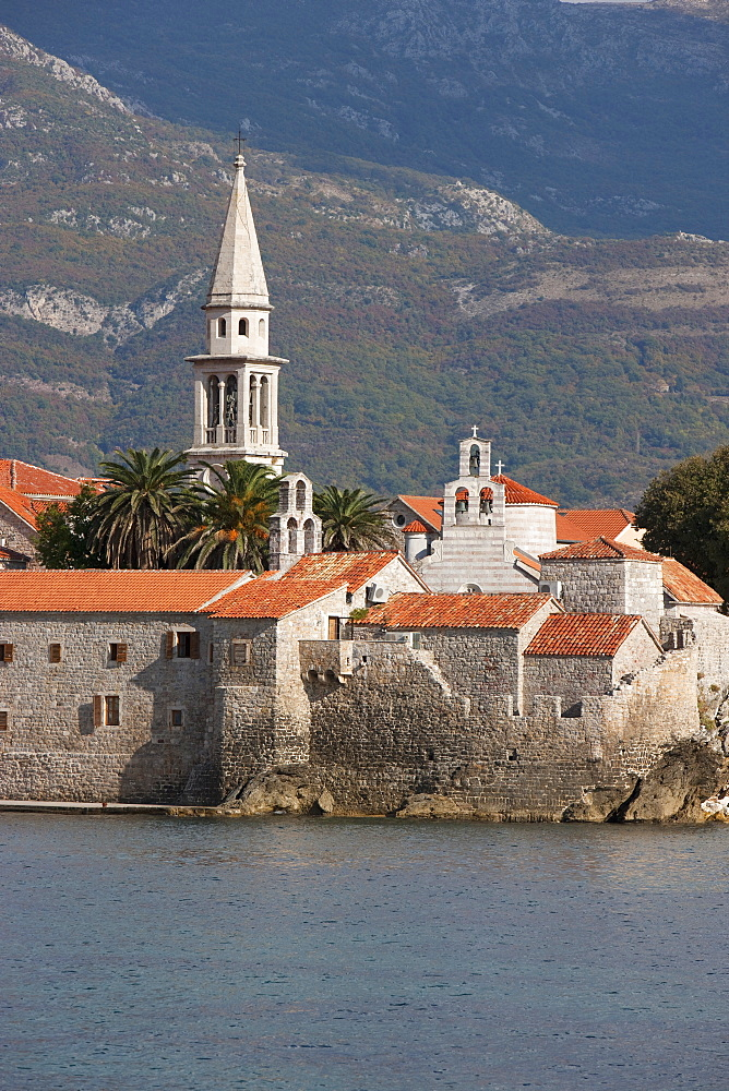 Budva fortified old town on the Adriatic coast with the tower of St. John's Church, Budva, Montenegro, Europe
