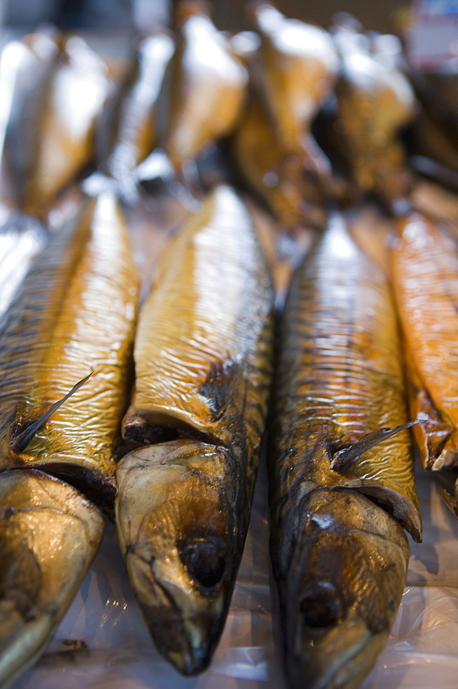 High quality stock photos of smoked fish for Smoked herring fish