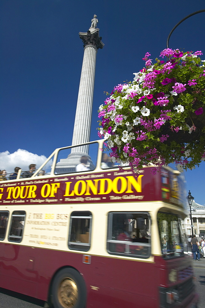 London tour bus passing Nelson's Column, Trafalgar Square, London, England, United Kingdom, Europe - 790-27