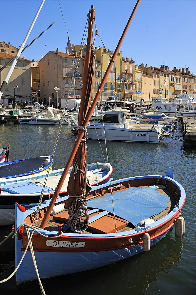 Fishing boats in Vieux Port harbour, St. Tropez, Var, Provence, Cote d'Azur, France, Mediterranean, Europe