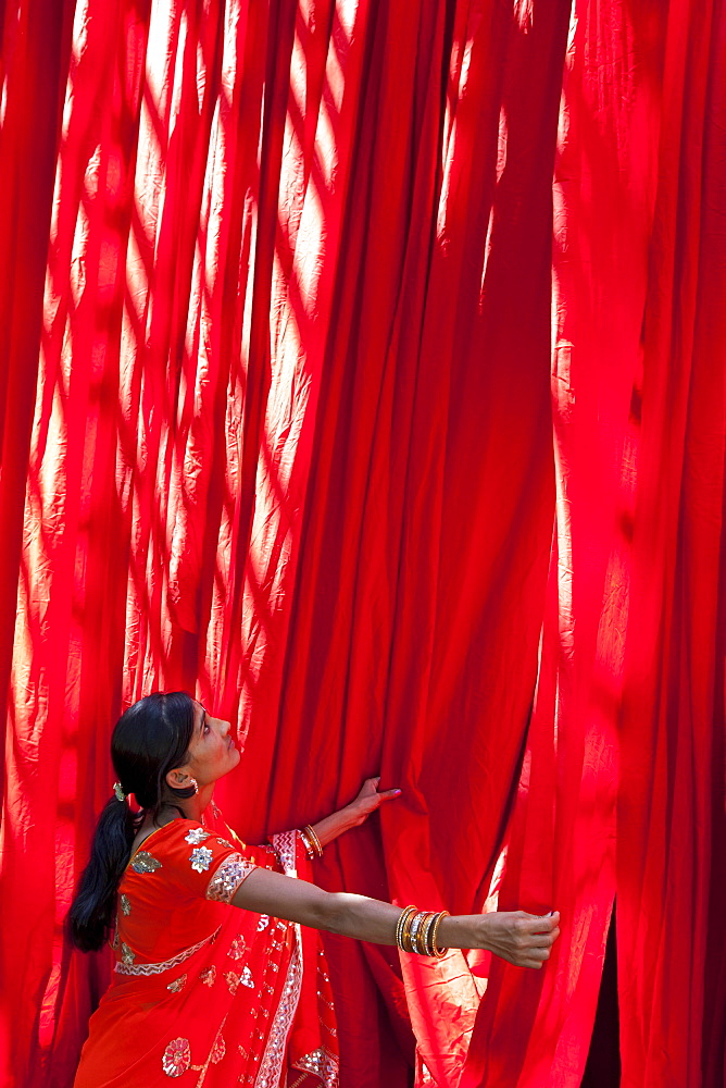 Woman in sari checking the quality of freshly dyed fabric hanging to dry, Sari garment factory, Rajasthan, India, Asia - 794-1464
