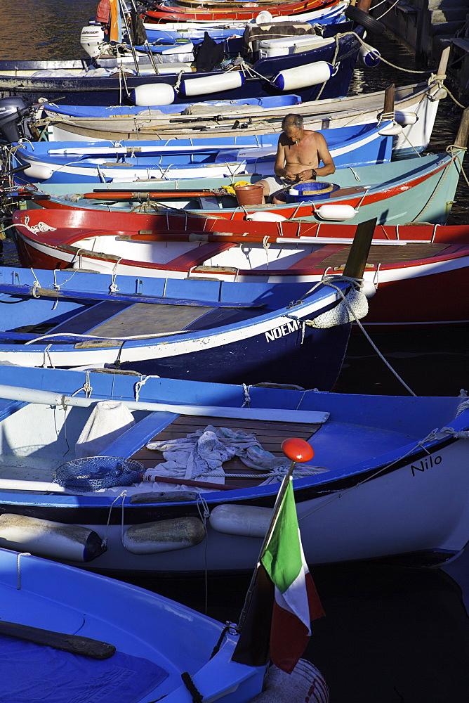 Vernazza, Cinque Terre, Liguria, Italy, Europe