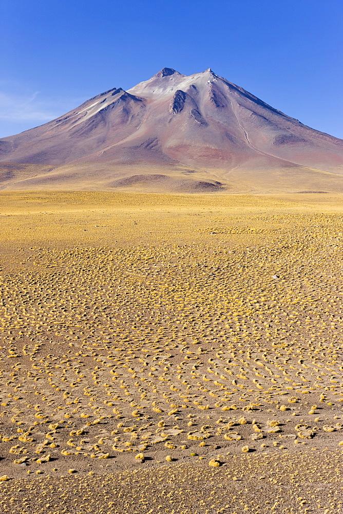 The altiplano at an altitude of over 4000m and the peak of Cerro Miniques at 5910m, Los Flamencos National Reserve, Atacama Desert, Antofagasta Region, Norte Grande, Chile, South America - 794-476