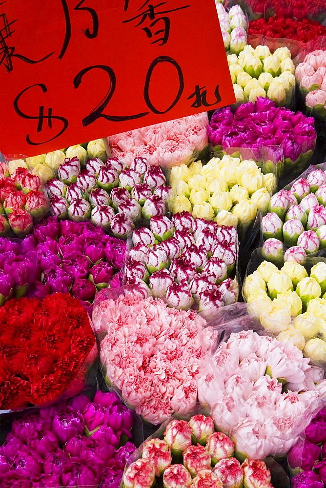 Flower market, Kowloon, Hong Kong, China, Asia - 794-88