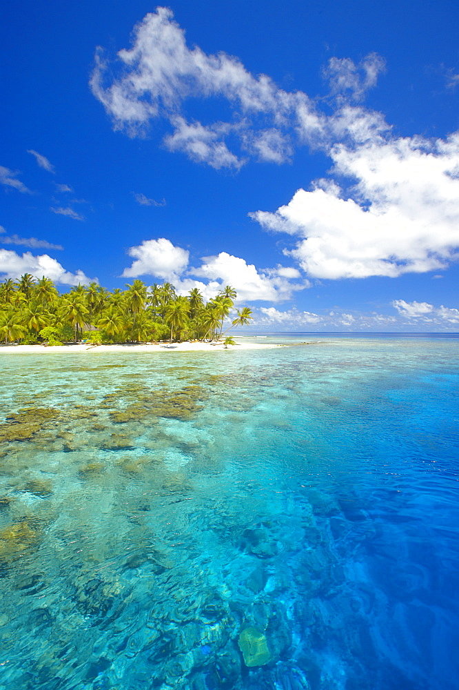Island and reef, Maldives, Indian Ocean, Asia