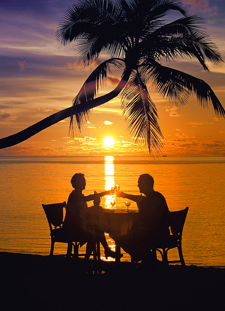 Couple having dinner at the beach, toasting glasses, Maldives, Indian Ocean, Asia - 795-178