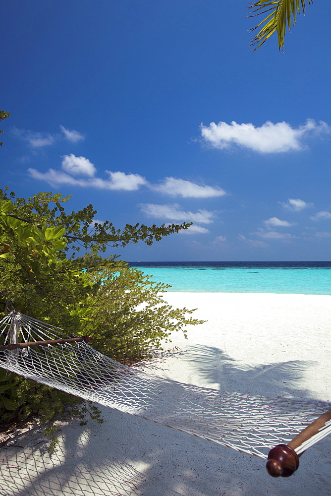Hammock on tropical beach, Maldives, Indian Ocean, Asia  - 795-501