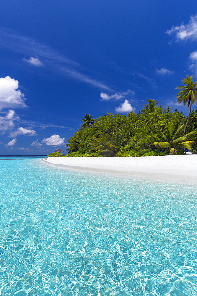 Beautiful sandy beach, lagoon and palm trees, The Maldives, Indian Ocean, Asia