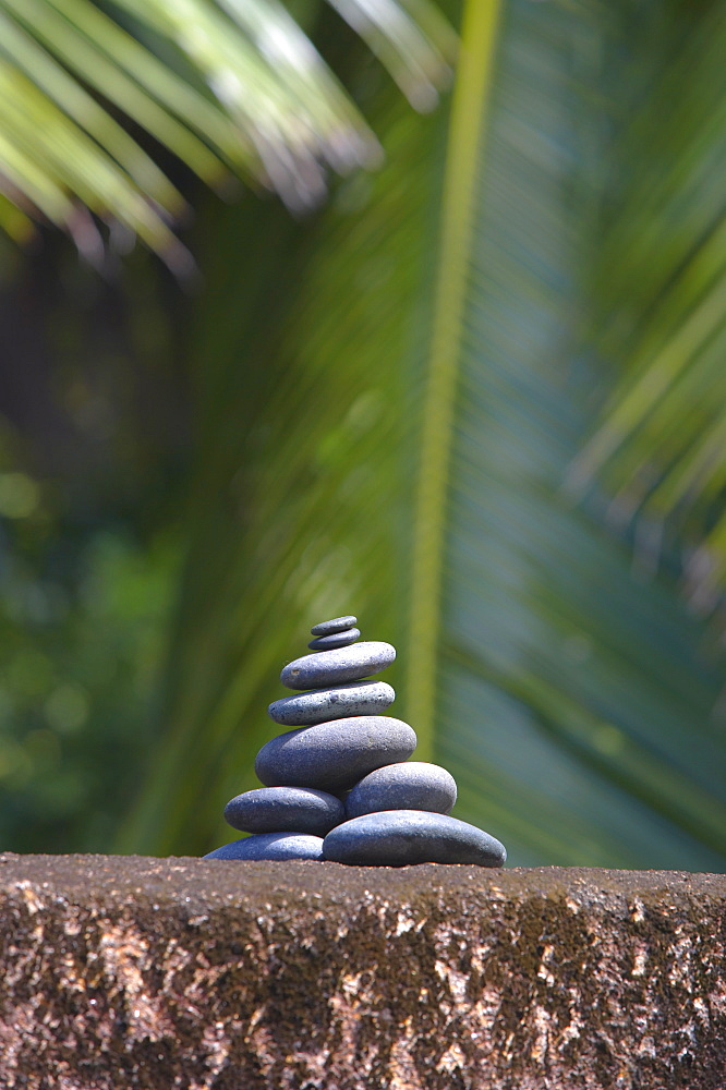 Stones balanced on rock, palm trees in background, Maldives, Indian Ocean, Asia