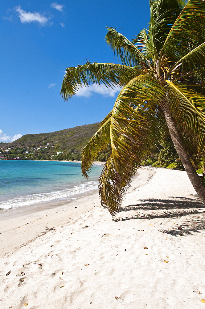 Friendship Bay beach, Bequia, St. Vincent and The Grenadines, Windward Islands, West Indies, Caribbean, Central America