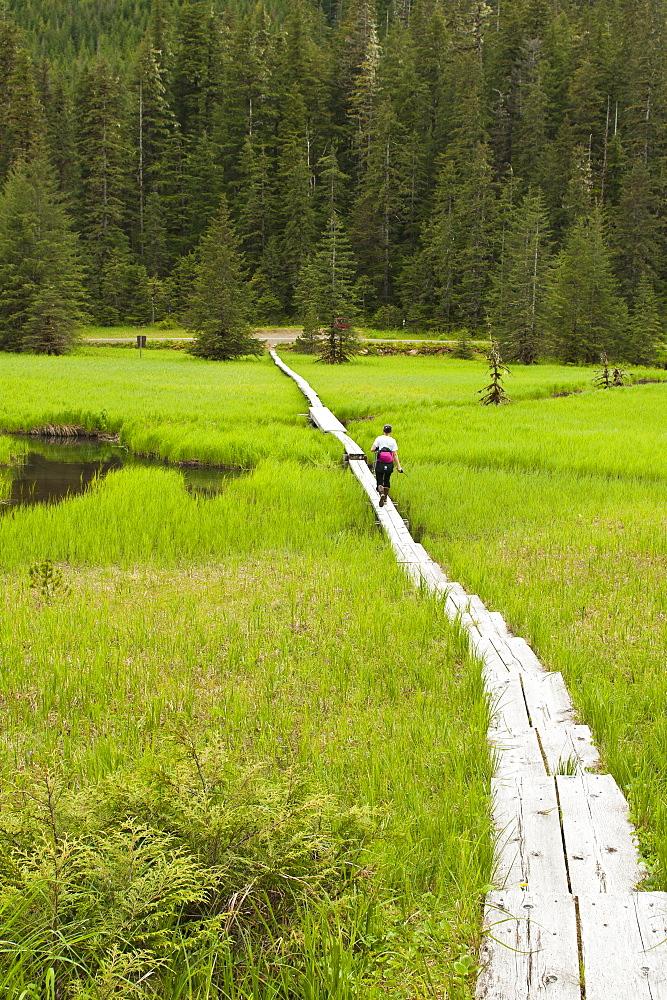 Hiking in the Ideal Cove area of Southeast Alaska, Alaska, United States of America, North America