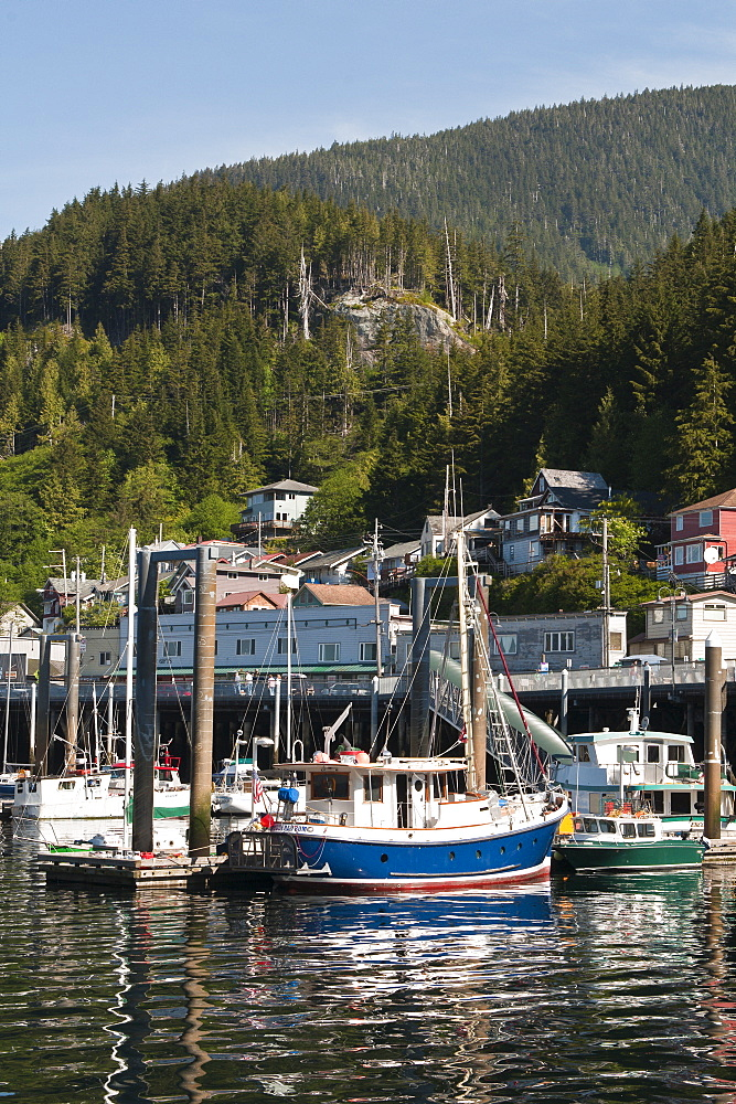 Fishing boats in Ketchikan harbor, Ketchikan, Southeast Alaska, United States of America, North America