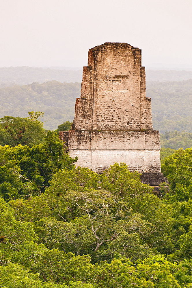 Tikal National Park (Parque Nacional Tikal), UNESCO World Heritage Site, Guatemala, Central America