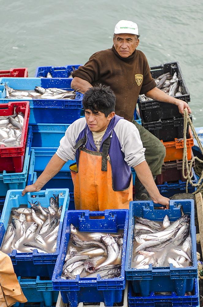 Sardine fishermen in Los Organos village near Mancora, Peru, South America