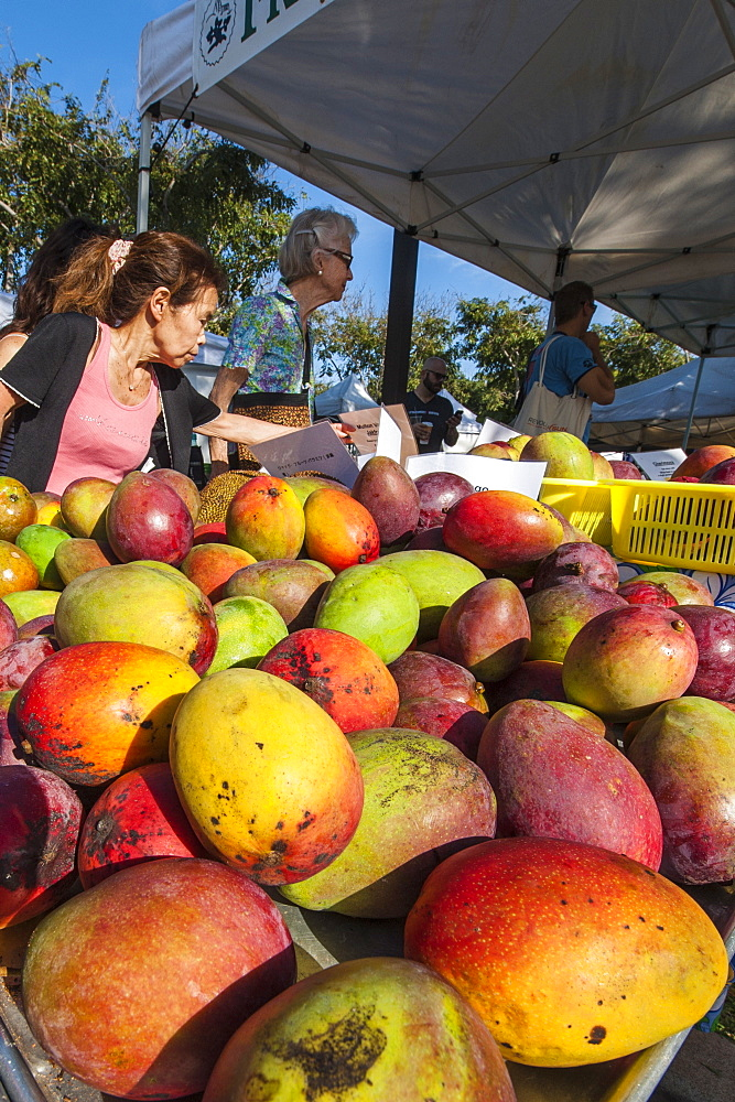 Fresh mangoes at the Saturday farmer's market Honolulu, Oahu, Hawaii.