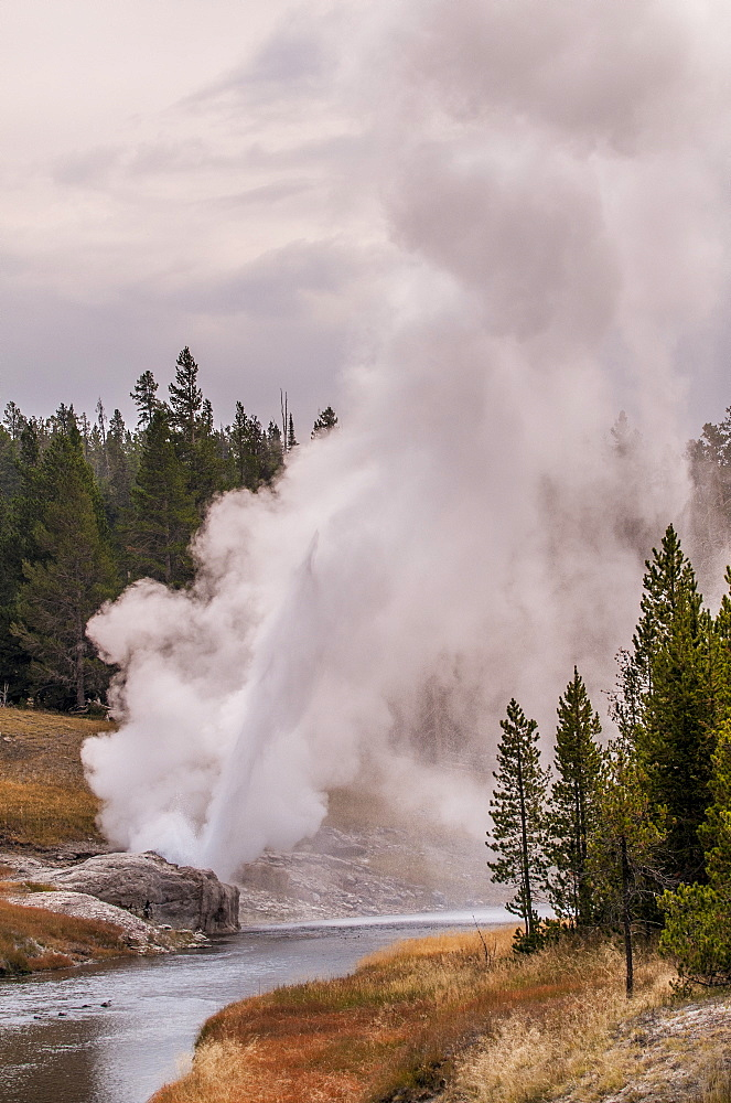 Riverside Geyser, Upper Geyser Basin Yellowstone National Park, UNESCO World Heritage Site, Wyoming, United States of America, North America