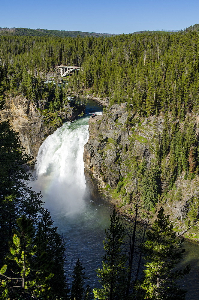 Upper Falls, Yellowstone National Park, UNESCO World Heritage Site, Wyoming, United States of America, North America