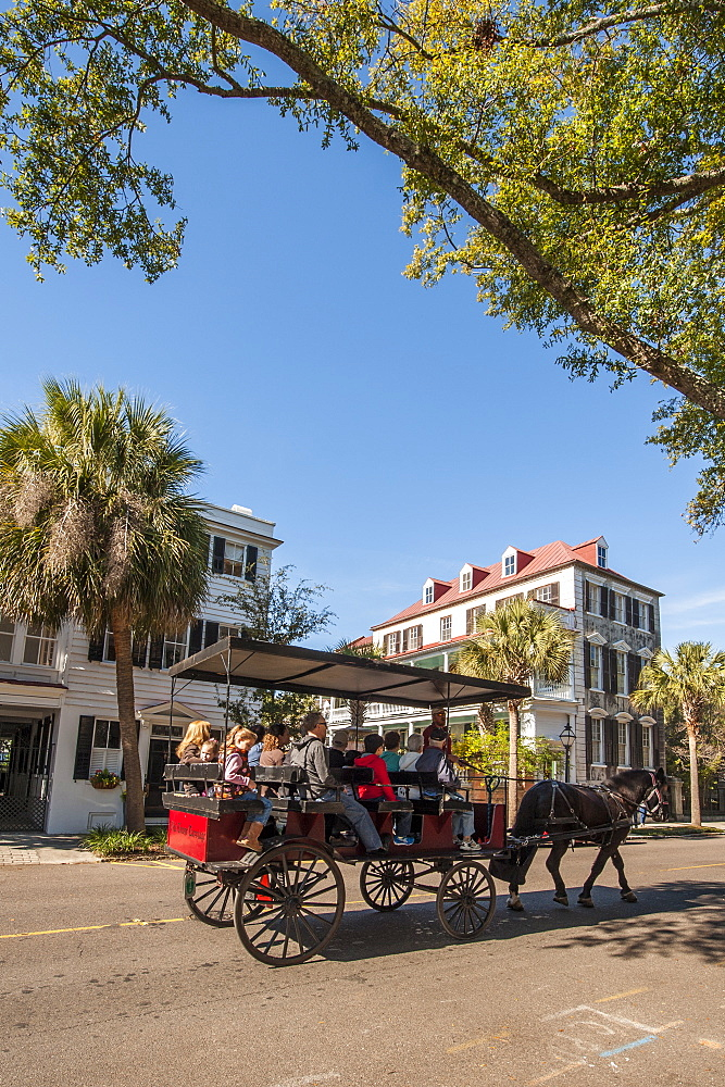 Horse and carriage ride on Bay Street, Charleston, South Carolina, United States of America, North America