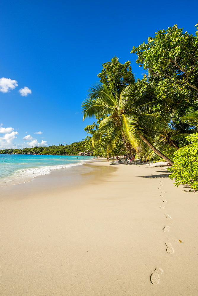 Anse Lazio Beach, Praslin, Republic of Seychelles, Indian Ocean, Africa - 796-2346