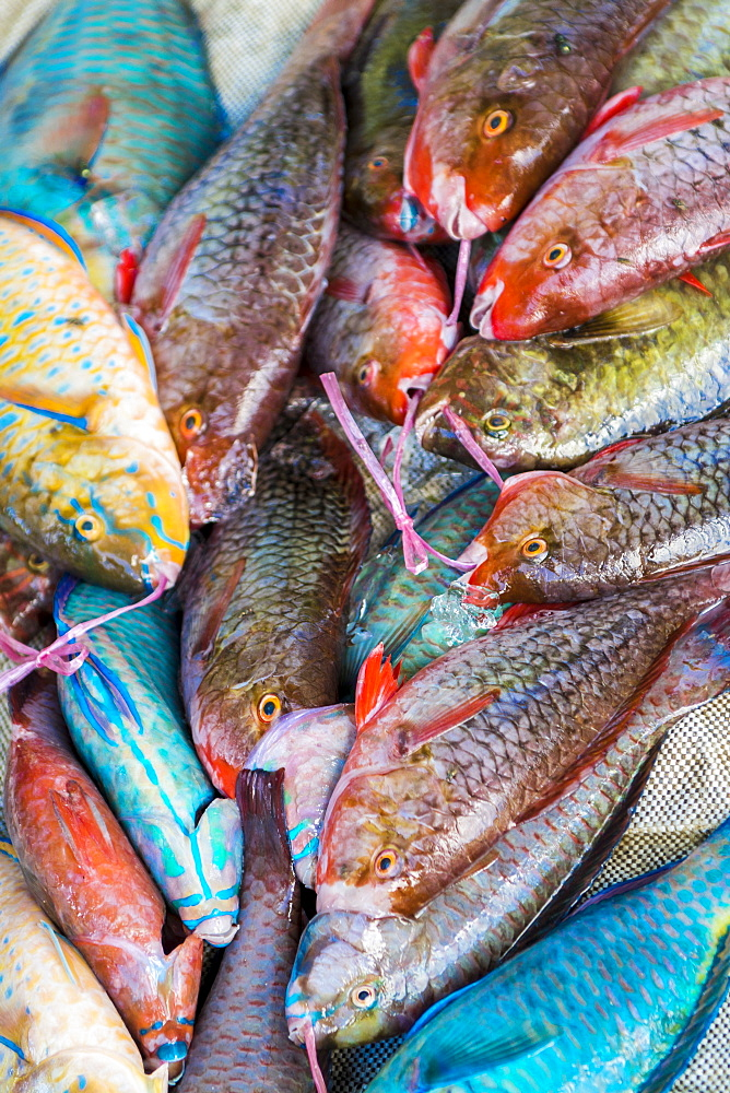 Local fish market, Praslin, Republic of Seychelles, Indian Ocean, Africa