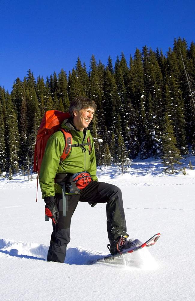 Snowshoeing near Lake Louise, Alberta, Canada, North America