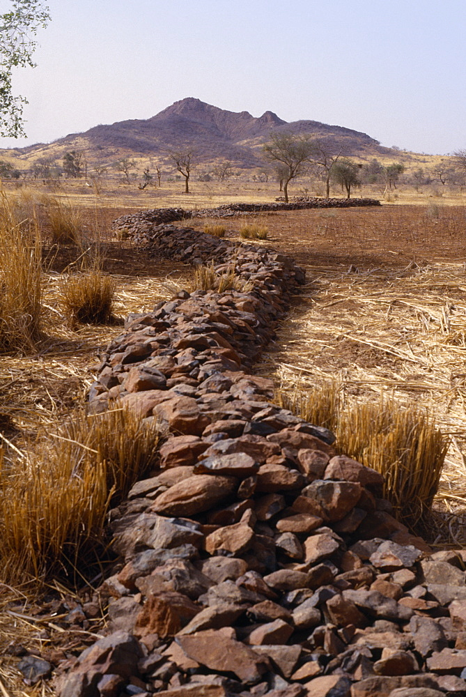 BURKINA FASO Environment Flooding Bund  low rock walls built to prevent soil erosion by flash floods. Stones are placed along the contours on gentle slopes. Sometimes the bunds are reinforced by planting tough grasses along the lines. The stones and grass encourage rain water to infiltrate the soil and reduce the amount of rain water that is lost by run-off. Any soil that has been eroded by run-off is trapped by the bund. Topsoil and organic matter  e.g. leaf litter  is deposited here.Bunds are placed 10 to 25 metres apart African Western Africa Ecology Entorno Environmental Environnement Green Issues