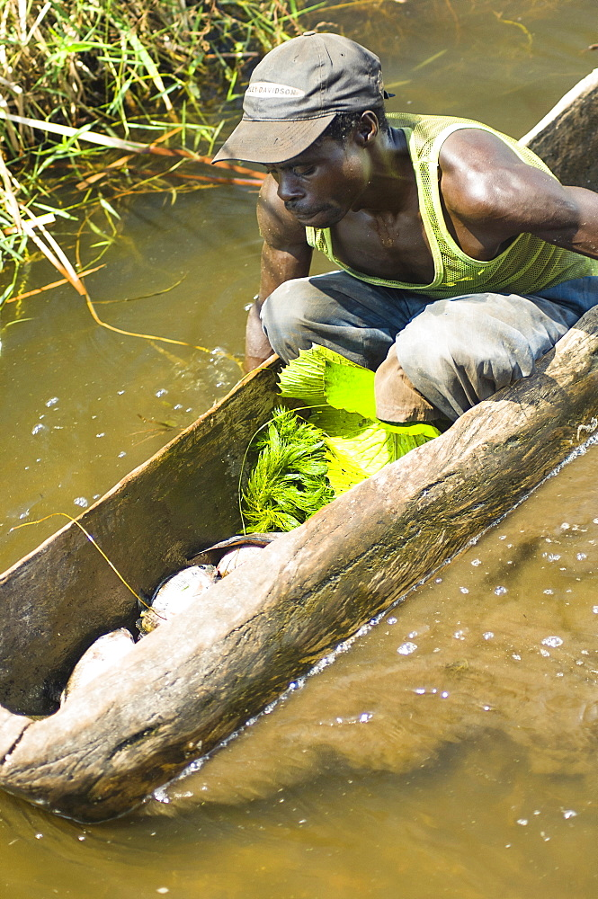 Burundi, Cibitoke Province, Cibitoke, Fisherman in dug out canoes on a small lake just north of Cibitoke town.