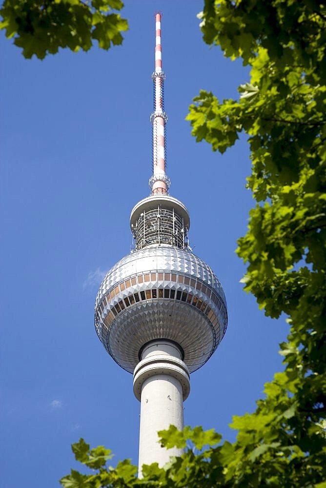 Germany, Berlin, Mitte, The Fernsehturm TV Tower near Alexanderplatz seen through trees against a blue sky.