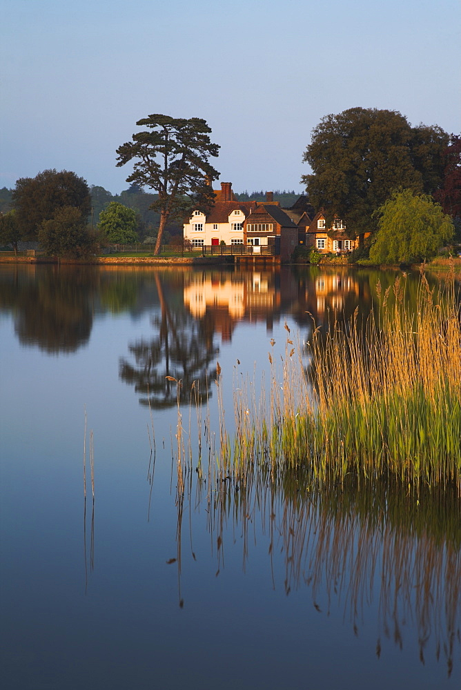 Early evening sunshine across the water at Beaulieu, New Forest, Hampshire, England, United Kingdom, Europe