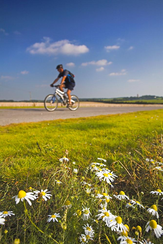 Lone cyclist rides along an off-road track, Horton, Dorset, England, United Kingdom, Europe