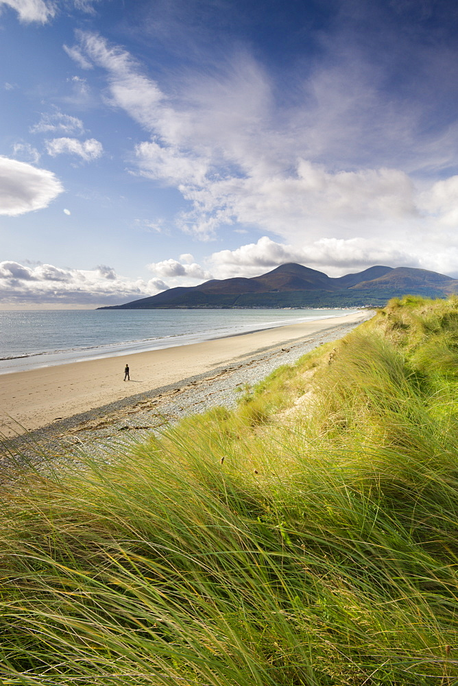 Person walking alone along Dundrum Bay, County Down, Northern Ireland, United Kingdom, Europe