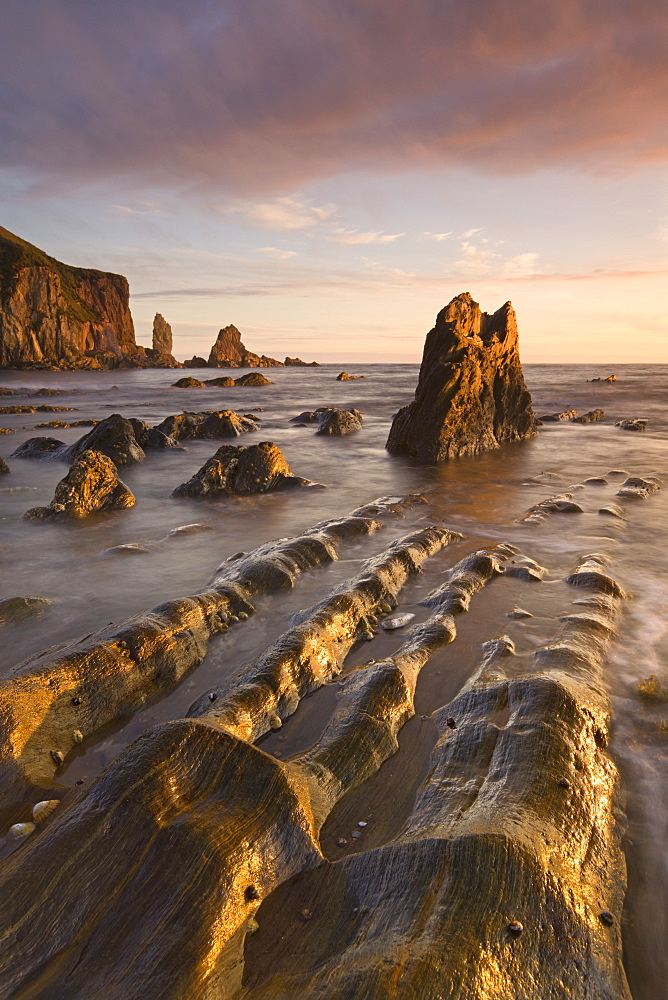Golden evening sunlight bathes the rocks and ledges at Bantham in the South Hams, Devon, England, United Kingdom, Europe