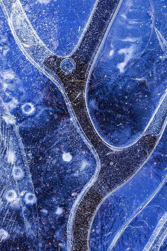 Ice pattern in frozen pond, Dartmoor, Devon, England, United Kingdom, Europe  - 799-2345
