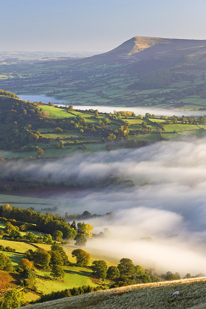 Early morning mist rolls over patchwork countryside in the Brecon Beacons National Park, Powys, Wales, United Kingdom, Europe