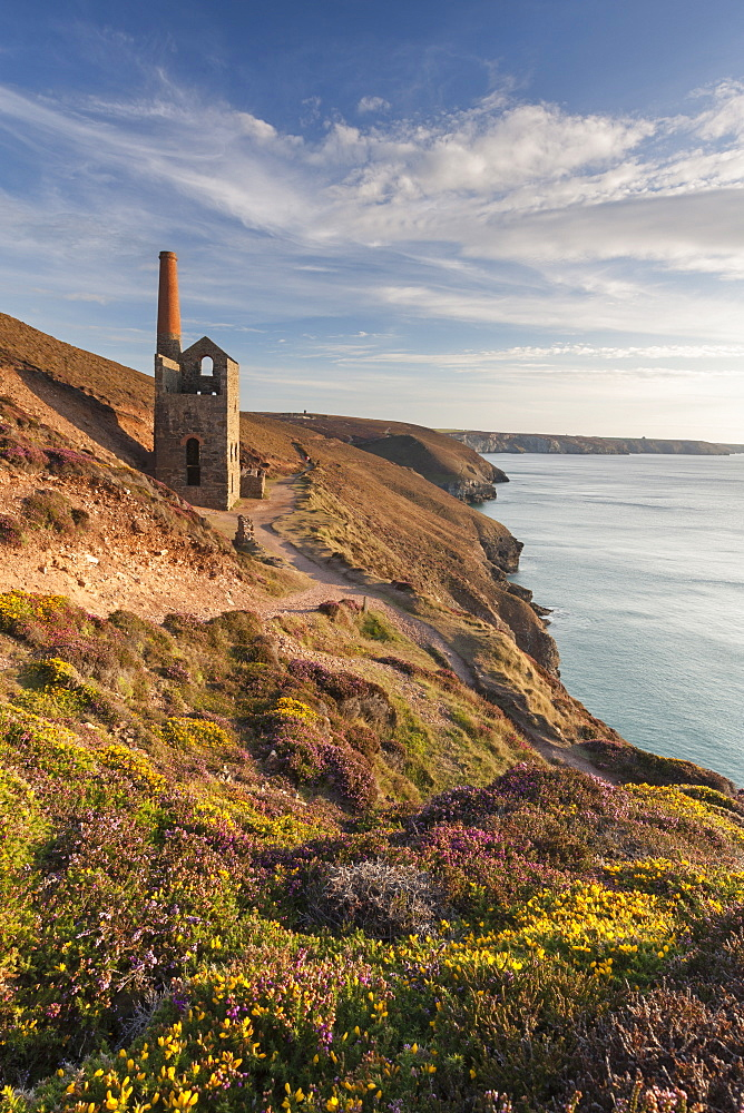 The abandoned Wheal Coates engine house, UNESCO World Heritage Site, on the Cornish cliffs near St. Agnes, Cornwall, England, United Kingdom, Europe