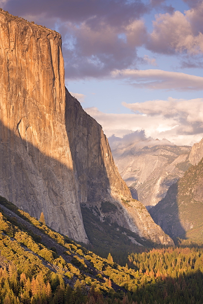 The enormous face of El Capitan towering above Yosemite Valley, Yosemite National Park, UNESCO World Heritage Site, California, United States of America, North America