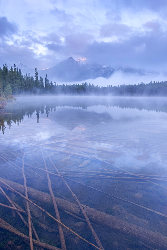 Atmospheric misty morning in the Canadian Rockies, Herbert Lake, Banff National Park, UNESCO World Heritage Site, Alberta, Canada, North America