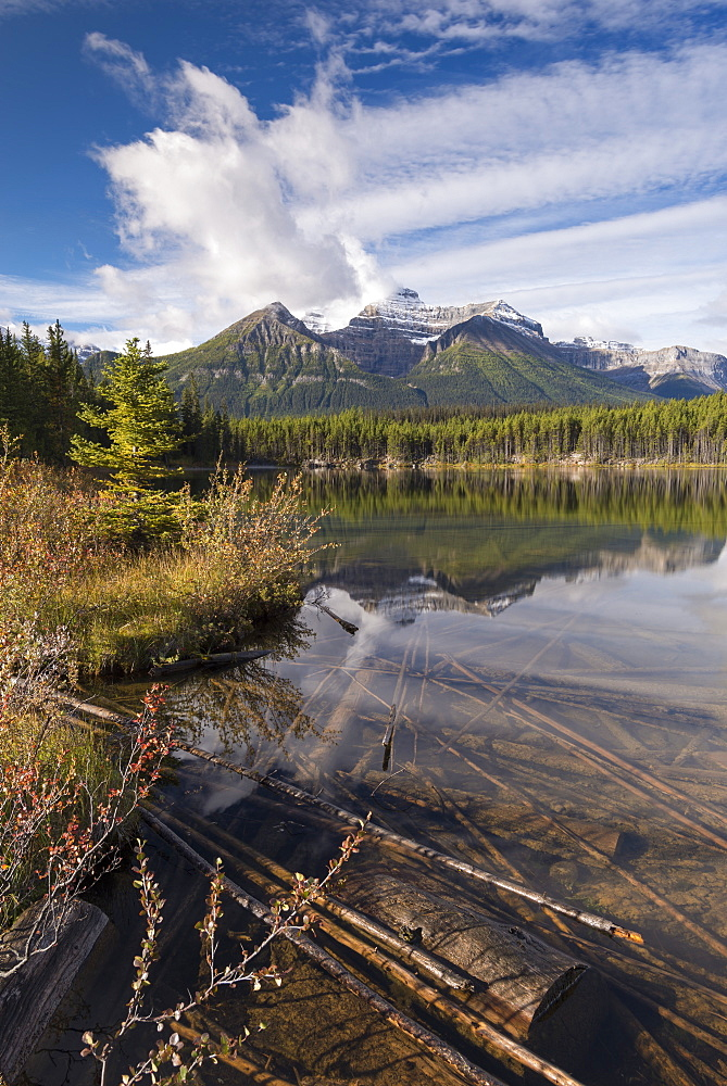 Autumnal morning at Herbert Lake in the Canadian Rockies, Banff National Park, UNESCO World Heritage Site, Alberta, Canada, North America - 799-3461