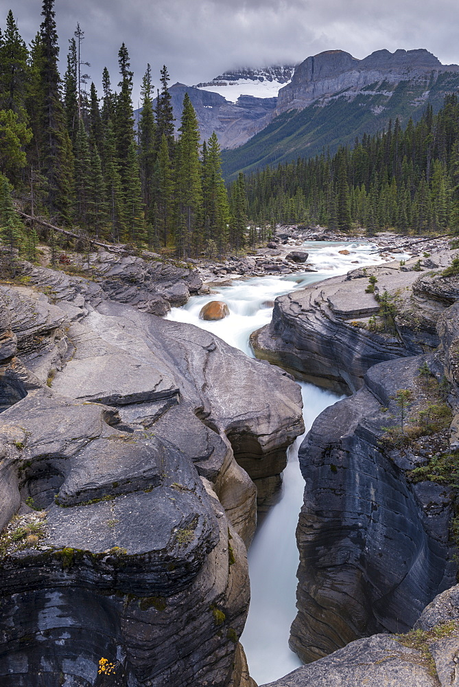 Mistaya Canyon in the Canadian Rockies, Banff National Park, UNESCO World Heritage Site, Alberta, Canada, North America - 799-3463