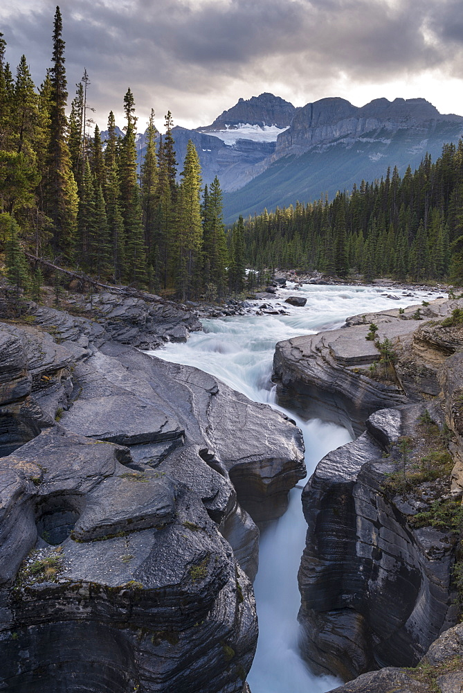 Mistaya Canyon off the Icefields Parkway in the Canadian Rockies, Alberta, Canada, North America
