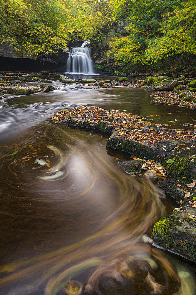 Cauldron Falls near the village of West Burton, Yorkshire Dales, England. Autumn (October) 2018.