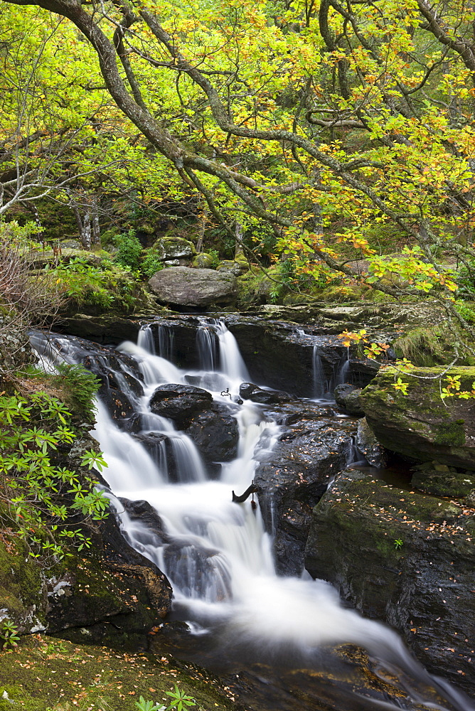 Waterfall on Arklet Water near Inversnaid, Loch Lomond and The Trossachs National Park, Stirling, Scotland, United Kingdom, Europe - 799-826