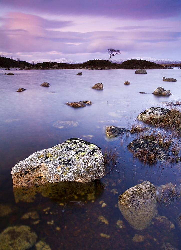 Lochan n-ah Achlaise on Rannoch Moor in twilight, Highlands, Scotland, United Kingdom, Europe