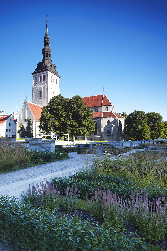 Niguliste Church, Tallinn, Estonia, Baltic States, Europe - 800-195