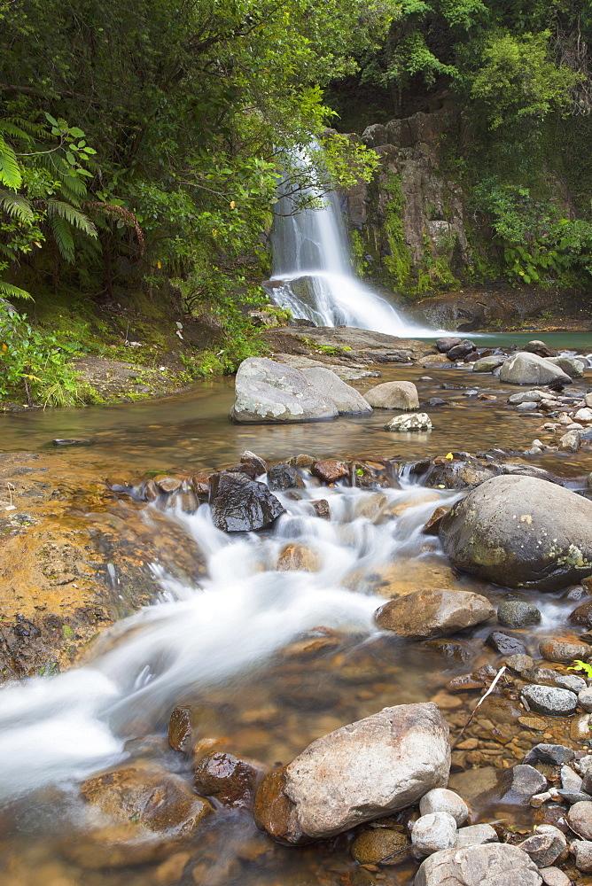 Waiau Falls on 309 Road, Coromandel Peninsula, Waikato, North Island, New Zealand, Pacific