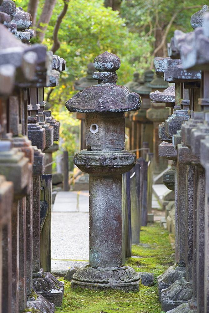 Stone lanterns at Kasuga Taisha Shrine at dusk, UNESCO World Heritage Site, Nara, Kansai, Japan, Asia