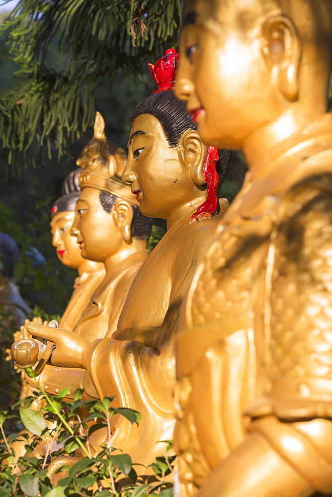 Statues at Ten Thousand Buddhas Monastery, Shatin, New Territories, Hong Kong, China, Asia