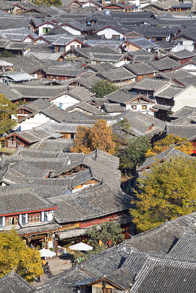 View of Lijiang, UNESCO World Heritage Site, Yunnan, China, Asia - 800-2983