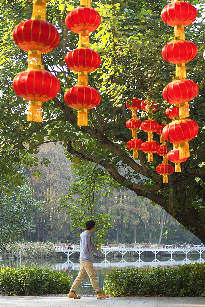Lanterns in Lizhi Park, Shenzhen, Guangdong, China - 800-3032