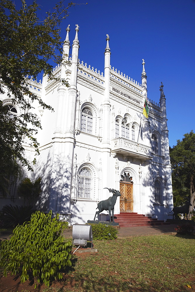 Natural History Museum, Maputo, Mozambique, Africa
